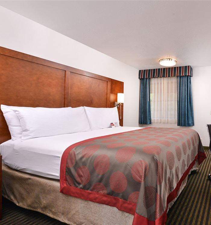 King Bed Room at Mountain View, California Hotel